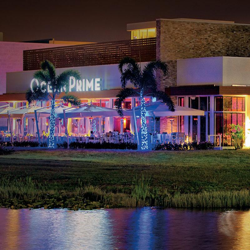 Ocean Prime Tampa
